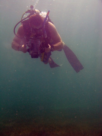 Winston Cowie - Marine Scientist - Diving in Qatar