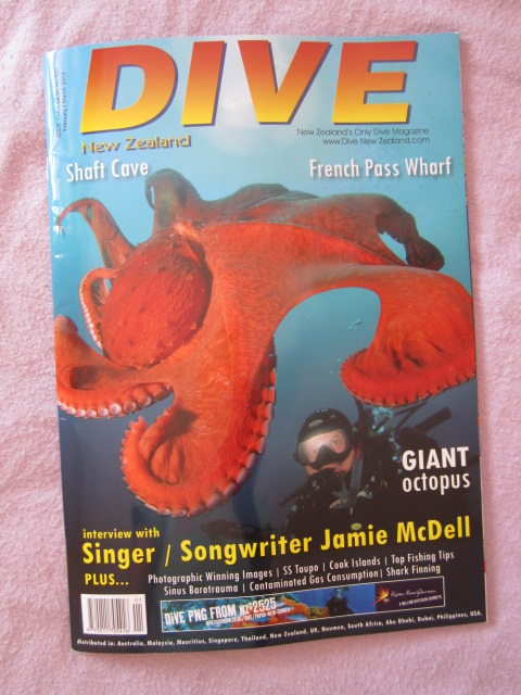 Dive NZ magazine - Spearfishing Qatar, by Winston Cowie