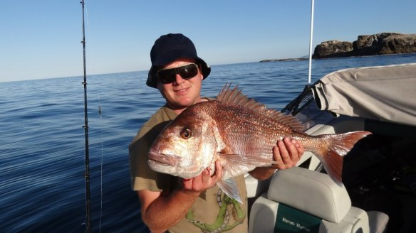 Heath Worsfold 11lb Snapper!