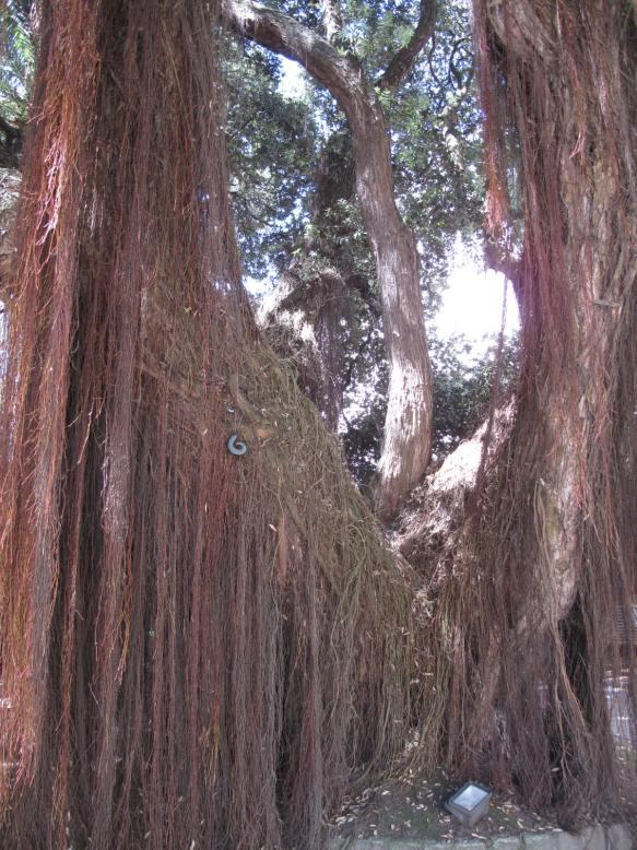 La Coruna pohutukawa greenstone gift by Winston Cowie